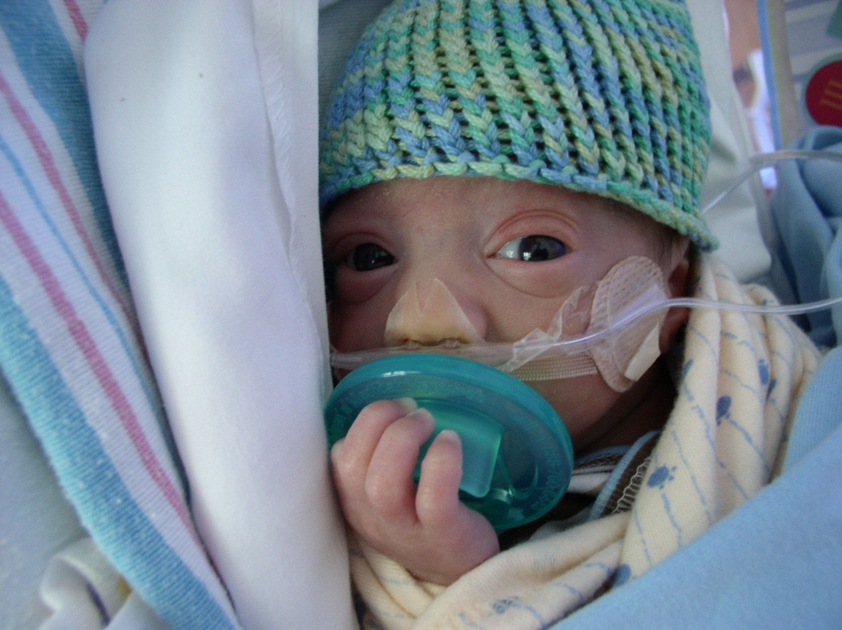 preemie teddy with philips soothie developmental care